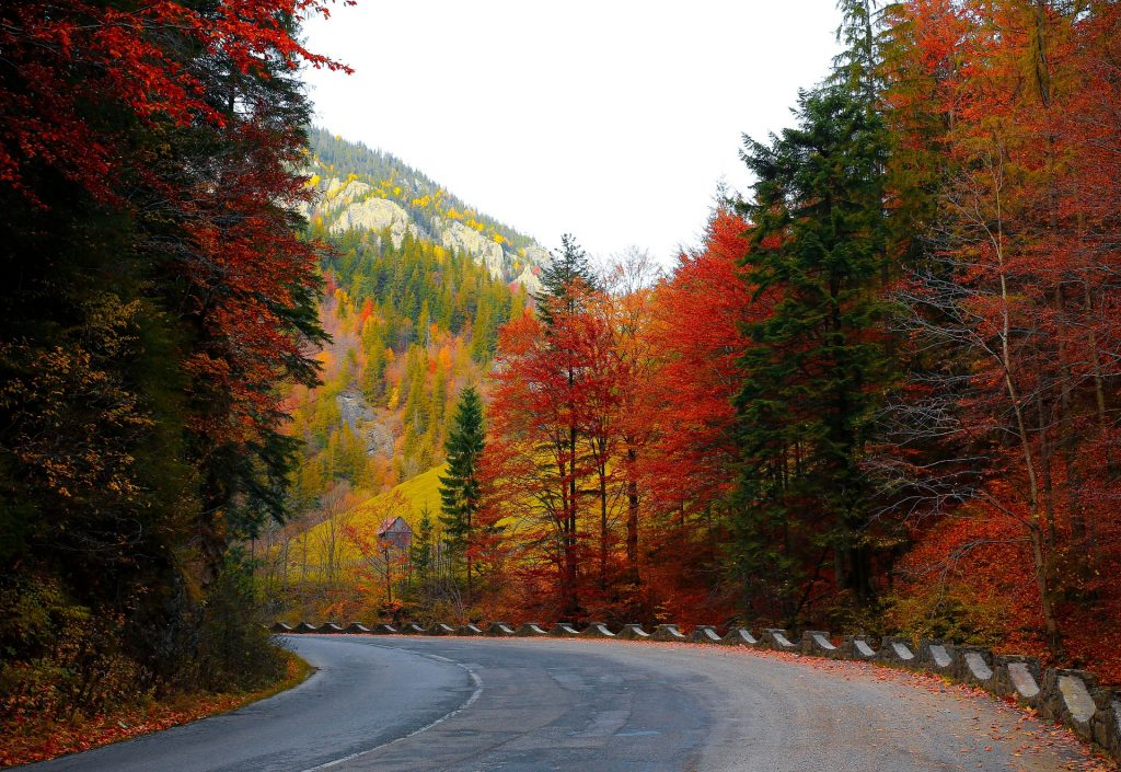 fall foliage fall bucket list for couples