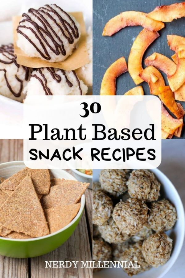 30 Plant Based Snacks for At Home or On the Go